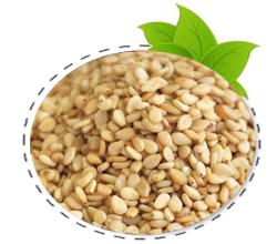 seasame-seed